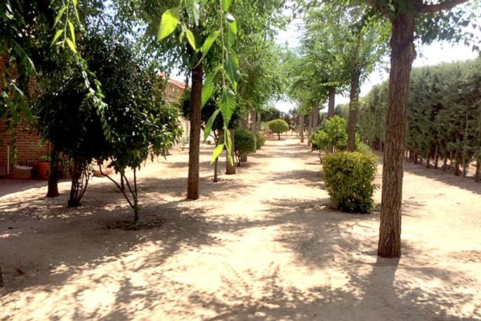Centro_Huerta_de_Nica_Jardín